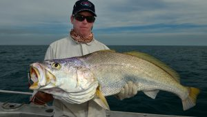 Mulloway Outcast Jig